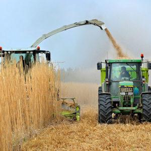 10.000 millones de euros para combatir la despoblación rural
