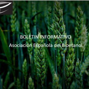 Boletín Informativo  Octubre BIO-E.