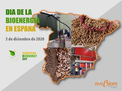 Día de la Bioenergía en España