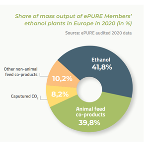 Informe estadístico de Bioenergy Europe 2021
