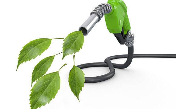 El sector de la distribución de carburantes (CEEES) se une a la Asociación Española del Bioetanol