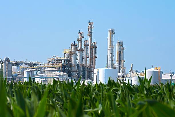 La hora de la bioenergía como parte de la solución estratégica para la descarbonización